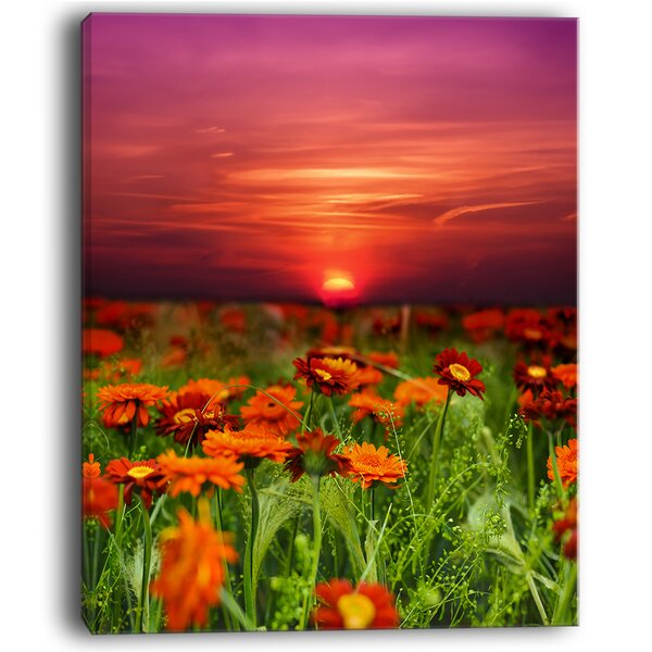 Sunset Flowers with Red Sky Modern Landscape Photographic Print on Wrapped Canvas by Design Art