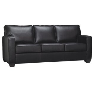 Ritter Leather Sleeper Sofa
