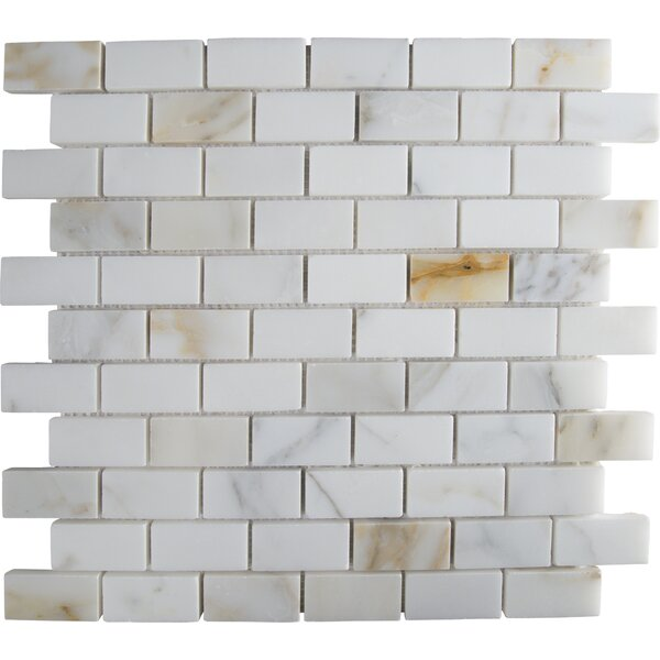 Calacatta Gold Mounted 1 x 2 Marble Subway Tile in White by MSI