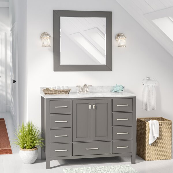 Newtown 48 Single Vanity Set with Mirror by Beachcrest Home