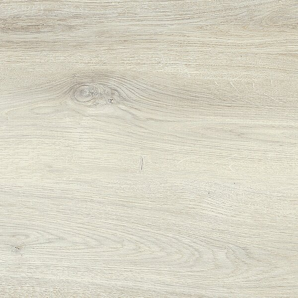 Vogue 8 x 48 Porcelain Field Tile in White by Madrid Ceramics