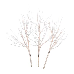3 Stem Birch Branch