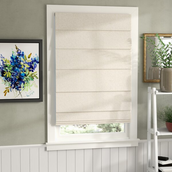 Top Down Bottom Up Room Darkening Roman Shade by Darby Home Co