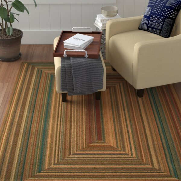 Lipan Illusion Area Rug by Red Barrel Studio