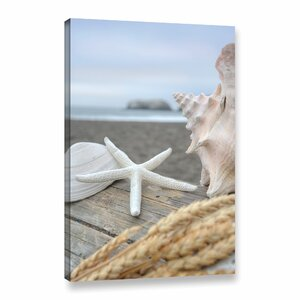 'Crescent Beach Shells 12' Photographic Print on Wrapped Canvas by Highland Dunes