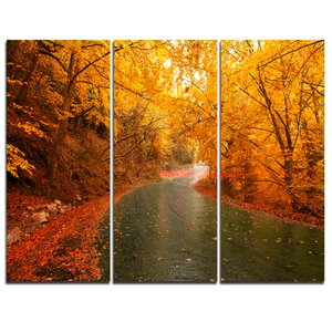 Autumn Light Trails on Road - 3 Piece Graphic Art on Wrapped Canvas Set by Design Art