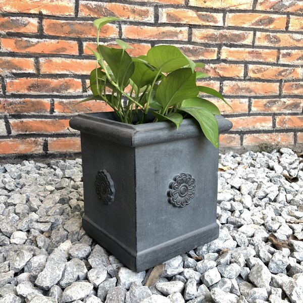Paddock Medallion Square Planter Box by Charlton Home