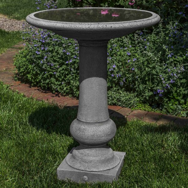 Williamsburg Boxwood Garden Birdbath by Campania International