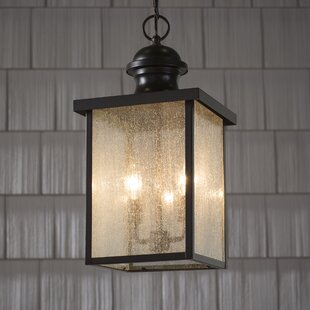 Looking for Curram Outdoor Hanging Lantern By Birch Lane™