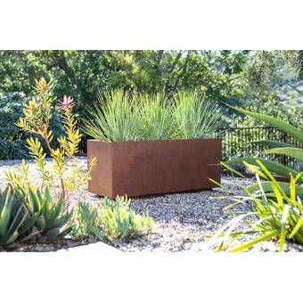 Metallic Series Corten Steel Planter Box Reviews Birch Lane