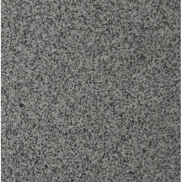 12 x 12 Granite Field Tile in Bianco Catalina by MSI