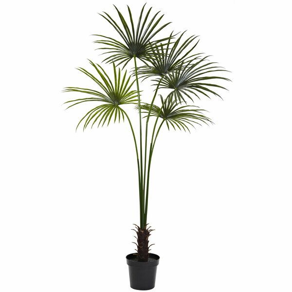 Fan Palm Tree in Pot by Nearly Natural
