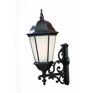 Buying Bellver Traditional 1-Light Glass Shade Outdoor Sconce By Astoria Grand