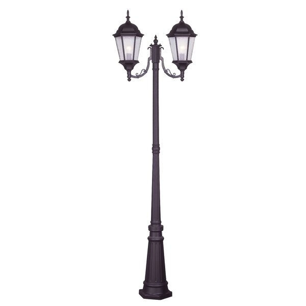 Busse Outdoor 2-Light 86 Post Light by Darby Home Co