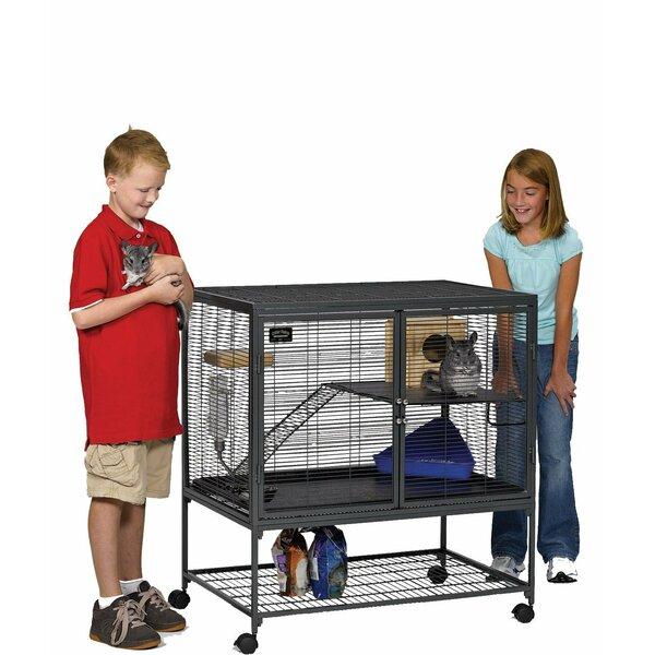 Claudette Single Ferret Cage by Archie & Oscar