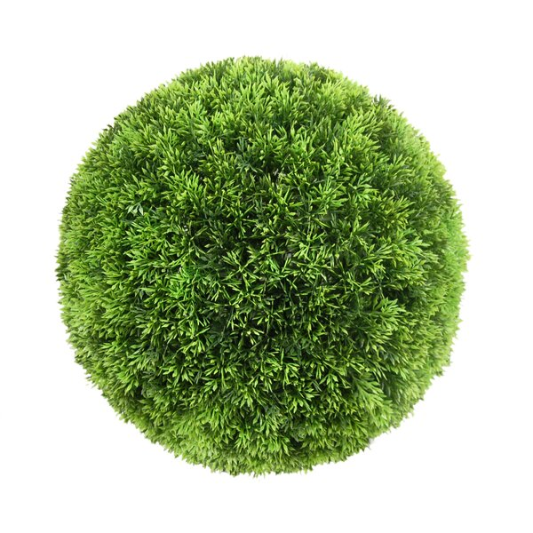 Ball Boxwood Topiary by Charlton Home