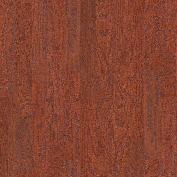 Oak Grove 5 Engineered Red Oak Hardwood Flooring in Stilson by Shaw Floors
