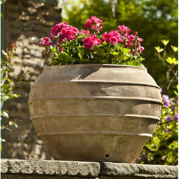 Hollywood Terracotta Pot Planter by August Grove