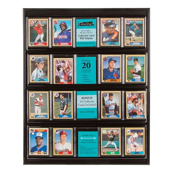 Collector Card Display by Darice