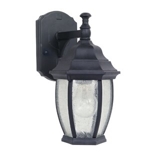 Coupon Oxford 1-Light Outdoor Wall Lantern By Mariana Home