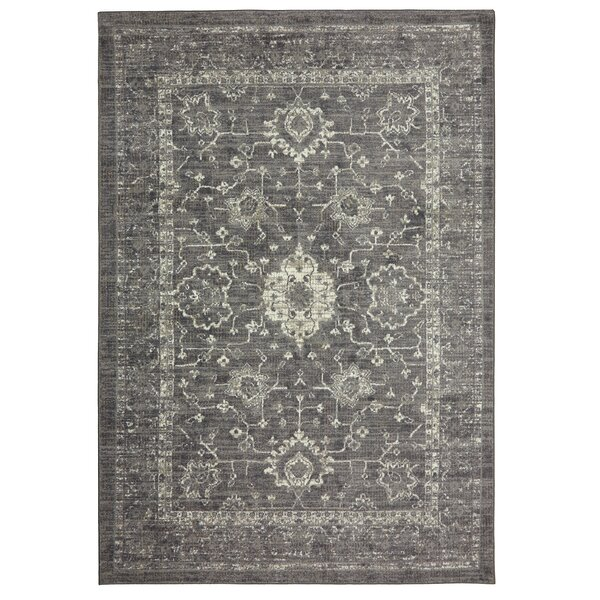 Soukup Patina Gray/Cream/Taupe Area Rug by Bungalow Rose