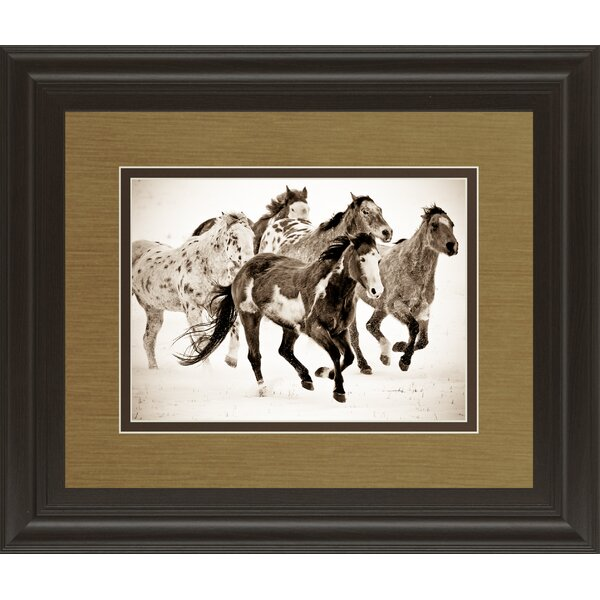 Painted Horses Run by Carol Walker Framed Photographic Print by Classy Art Wholesalers