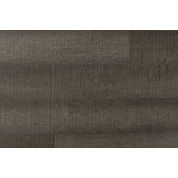 Chatman 4.75 x 48 x 12mm Oak Laminate Flooring in Mocha by Serradon