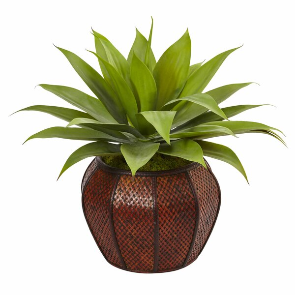 Artificial Agave Floor Succulent Plant in Planter by Bloomsbury Market