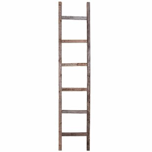 Rustic 5 ft Blanket Ladder by BarnwoodUSA