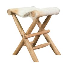 Eagle Folding Accent Stool by Loon Peak