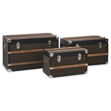 Schultz 3 Piece Trunk Set by Darby Home Co