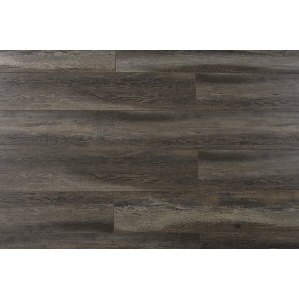 Abdiel Bima 7.72 x 47.83 x 12.3mm Laminate Flooring in Gray/Brown by Serradon