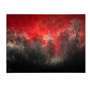 'Hot and Cold' by Philippe Sainte-Laudy Photographic Print on Canvas by Trademark Fine Art