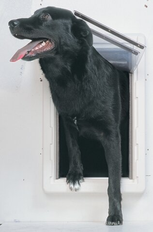 Extra Large All Weather Pet Door by Perfect Pet by