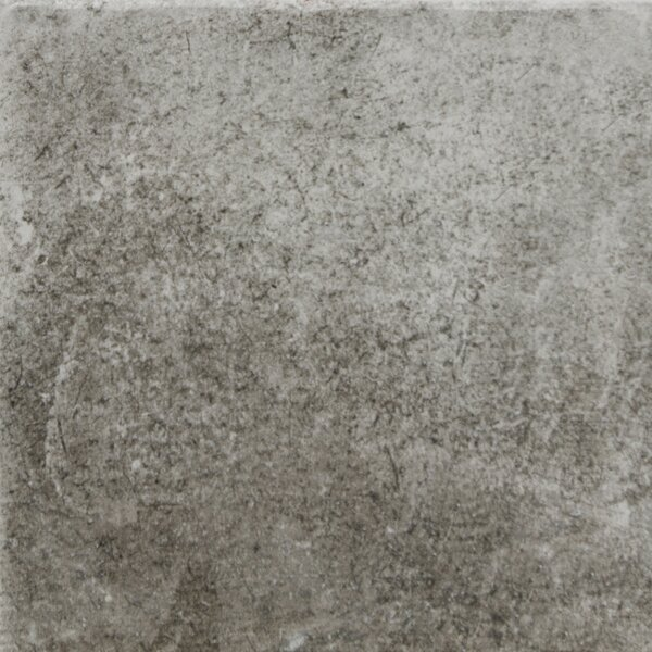 Newberry 16 x 16 Porcelain Field Tile in Grafite by Emser Tile