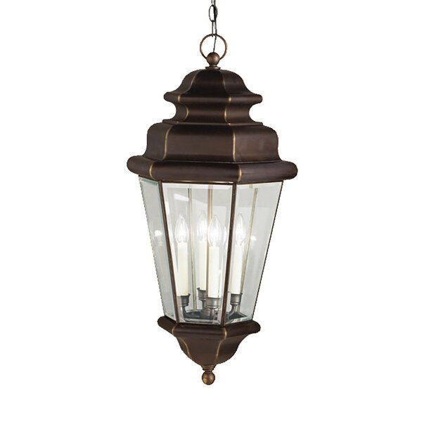Bigley 4-Light Outdoor Hanging Lantern by Darby Home Co