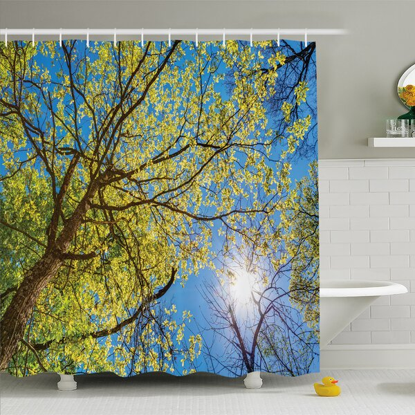 Forest Tree Branches Pastoral Lumber Wide Flourishing Natural Beauty Eco Backed Shower Curtain Set by Ambesonne