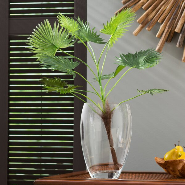 Bay Isle Home Desktop Palm Plant by Beachcrest Home