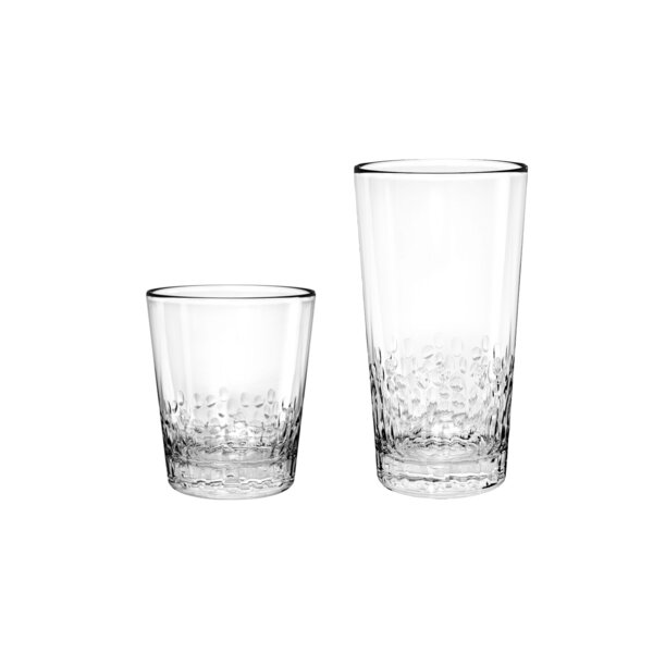 Livermore DOF and Jumbo 12 Piece Acrylic Drinkware Set by Beachcrest Home