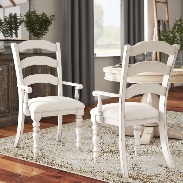 Alise Arm Chairs (Set of 2) by Lark Manor