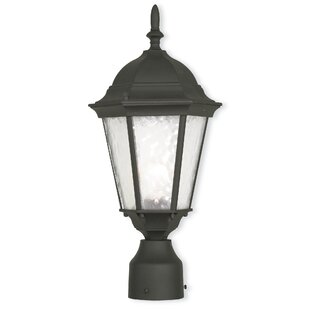 Top Reviews Busse 1-Light Lantern Head By Darby Home Co