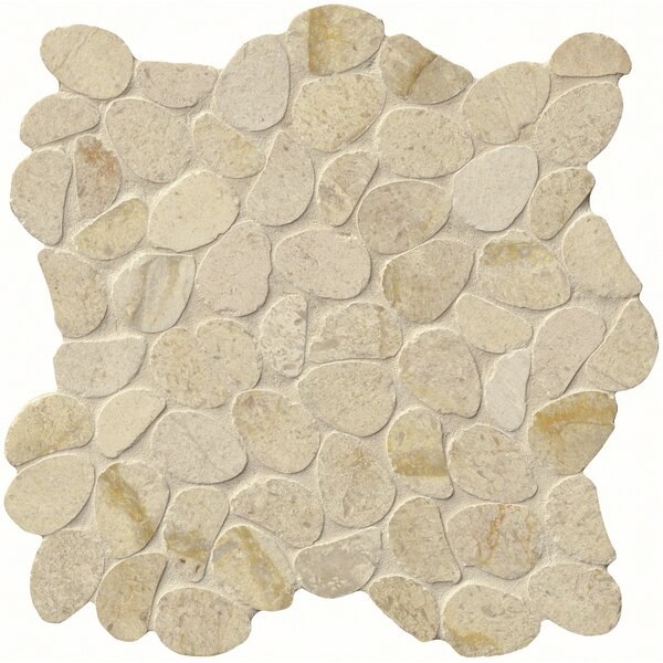 Coastal Sand Honed 12 x 12 Limestone Pebble Mosaic Tile in Beige by MSI