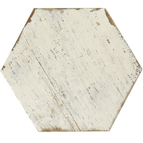 Rama 14.13 x 16.25 Porcelain Field Tile in White by EliteTile