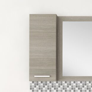 Silhouette 12 W X 30 25 H Wall Mounted Cabinet