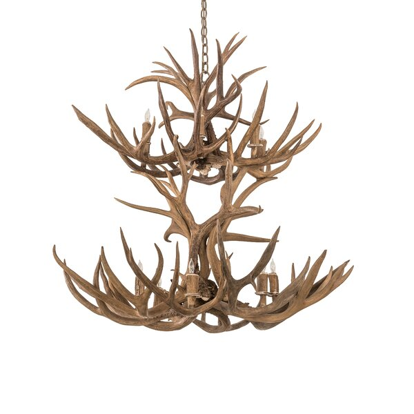 Scruggs 12 - Light Unique / Statement Classic / Traditional Chandelier With Antler Accents By Loon Peak