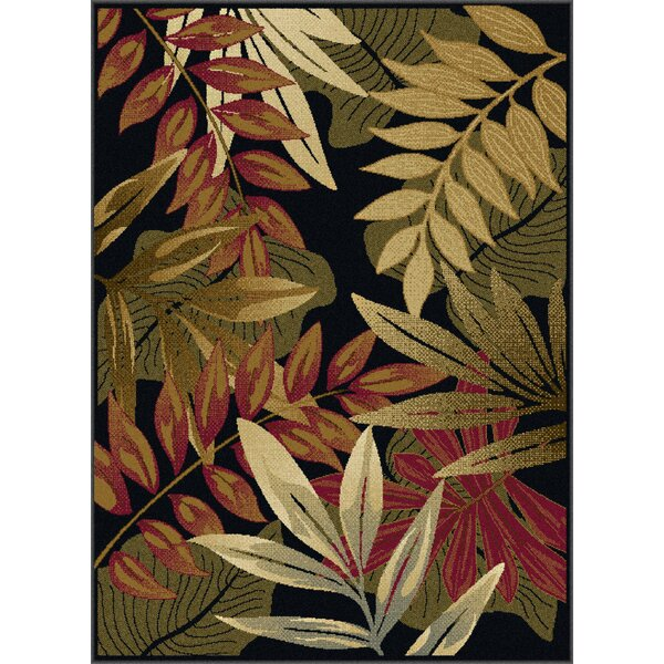 Yearsley Black Area Rug by Bay Isle Home