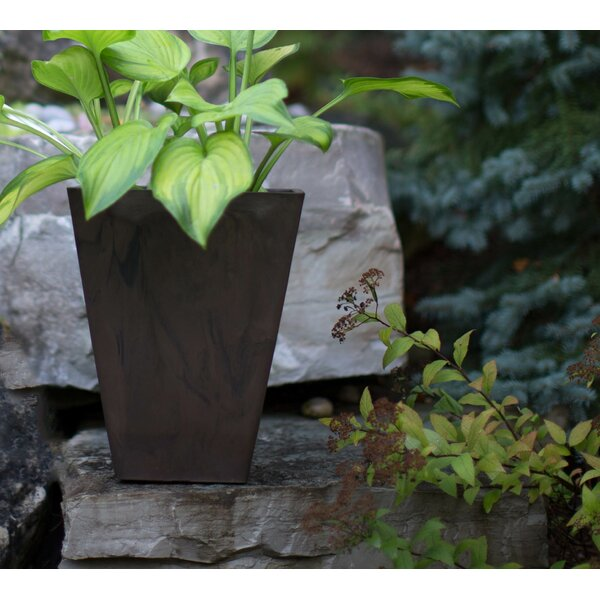 Cara Self-Watering Composite Pot Planter by Charlton Home