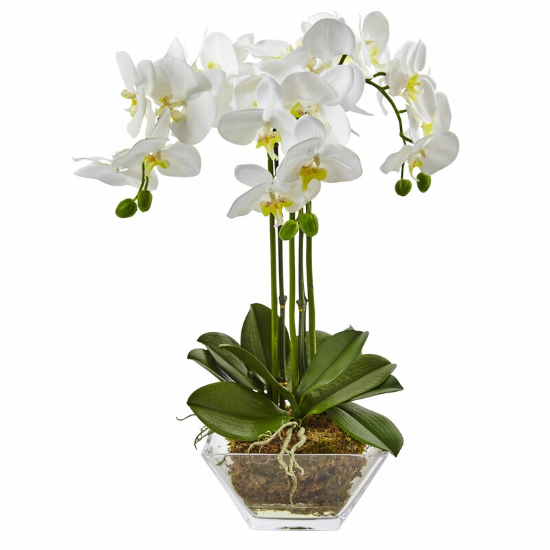 Nearly Natural Triple Phalaenopsis Orchid Floral Arrangements In