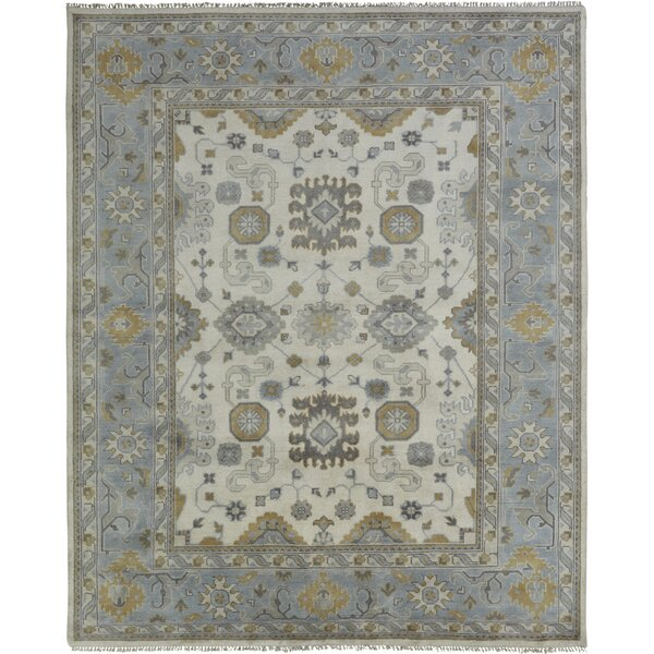 Hiran Hand Knotted Wool Ivory/Blue Area Rug by Darby Home Co