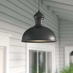 Outdoor hanging lights youll love wayfair binne 1 light outdoor pendant mozeypictures Choice Image